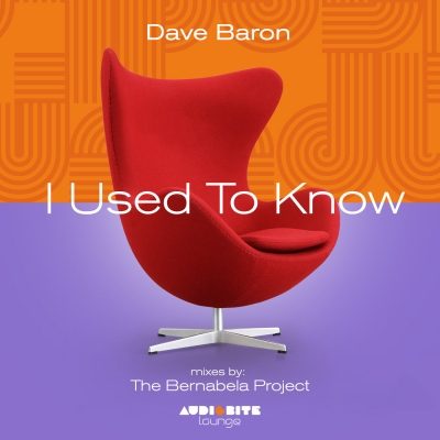 Dave Baron - I Used To Know